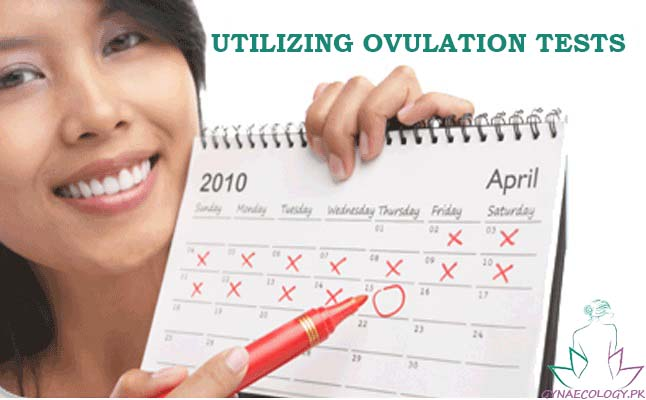 Utilizing Ovulation Tests to Predict Fertility Days In